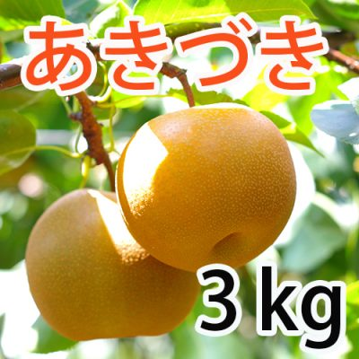 あきづき  3kg (6~7玉)