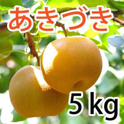 あきづき 5kg(7~12玉)