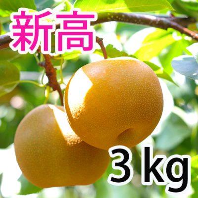 新高  3kg (4~5玉)