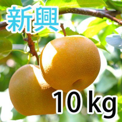 新興  10kg (12~18玉)