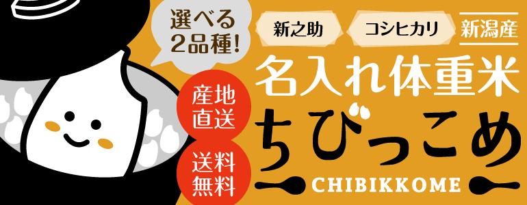 名入れ体重米ちびっこめ 新潟産「新之助」「コシヒカリ」選べる2品種