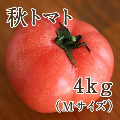 秋トマト Mサイズ約4kg(24玉)