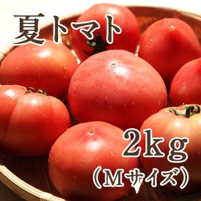 夏トマト Mサイズ約2kg(12玉)