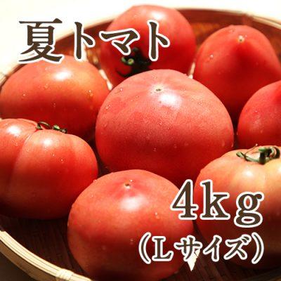 夏トマト Lサイズ約4kg(18~20玉)