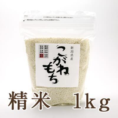 新潟産 こがねもち(もち米)精米1kg