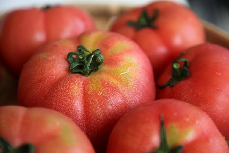新潟県産の地域ブランド「にごりかわトマト」