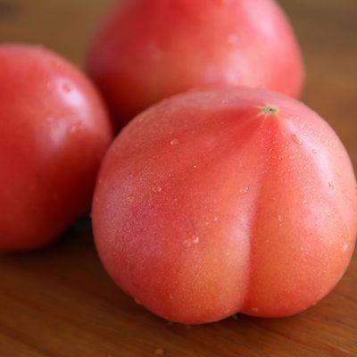 美味しいトマトはお尻から白い線が放射状に延びています♪