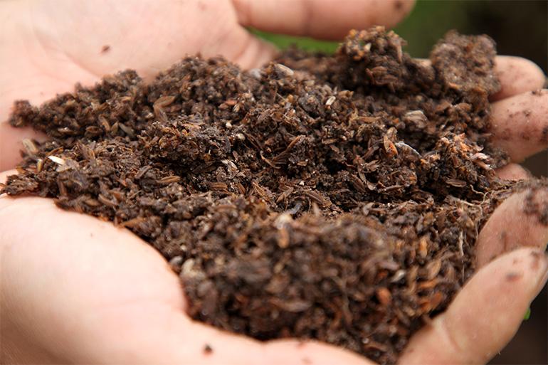 オリジナル堆肥を使用した「特別栽培米」