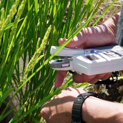 稲を健康に育てることを大切にする「濁川生産組合」