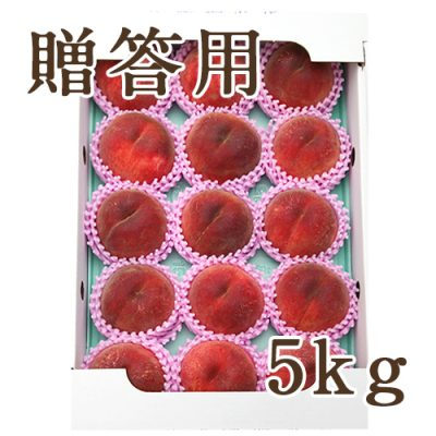 【贈答用】桃 5kg