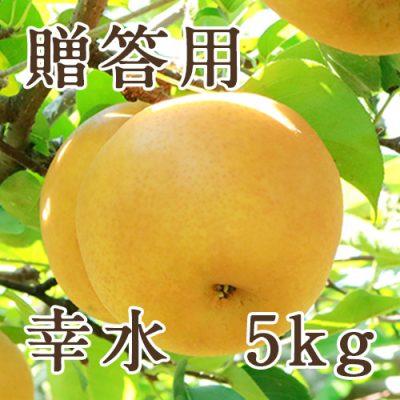 【贈答用】幸水 5kg(10〜18玉)