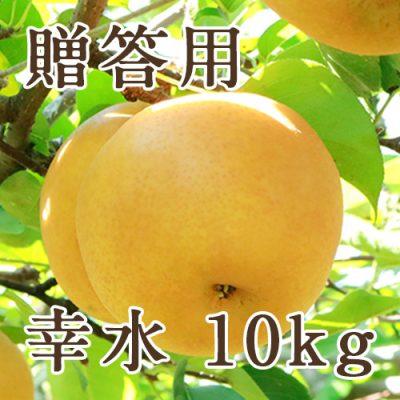 【贈答用】幸水 10kg(20〜36玉)