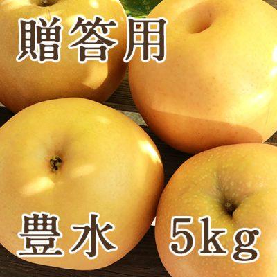 【贈答用】豊水 5kg(9〜16玉)