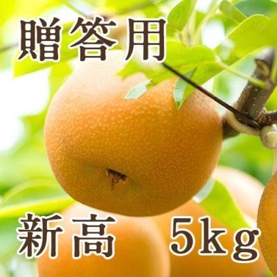 【贈答用】新高 5kg(6〜10玉)
