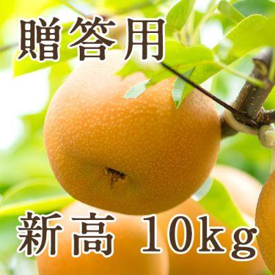 【贈答用】新高 10kg(12〜20玉)
