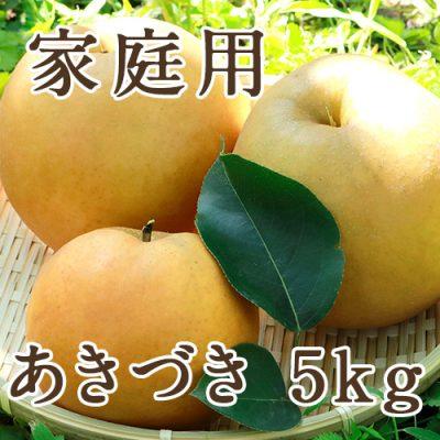 【家庭用】あきづき 5kg(9〜16玉)