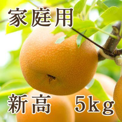 【家庭用】新高 5kg(6〜10玉)