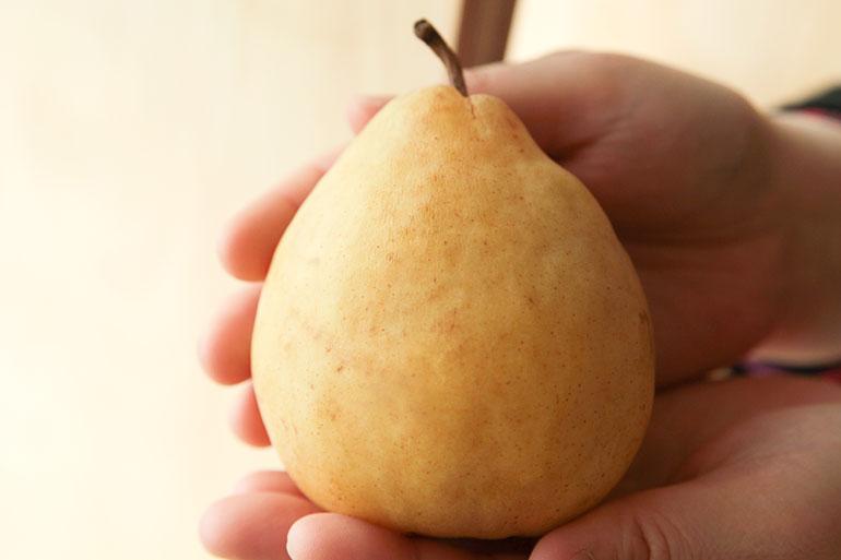 甘くてとろける幻の洋梨は一度食べたらやみつきに!