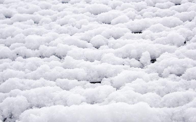 1.雪が保つ良質な土壌環境