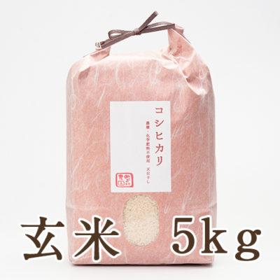 魚沼産 自然栽培 はざかけ米 コシヒカリ 玄米5kg