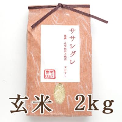 魚沼産 自然栽培 はざかけ米 ササシグレ 玄米2kg