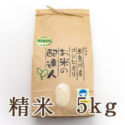 糸魚川産コシヒカリ(特別栽培)精米5kg