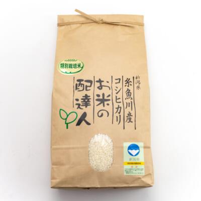 令和2年度米 糸魚川産コシヒカリ(特別栽培米)