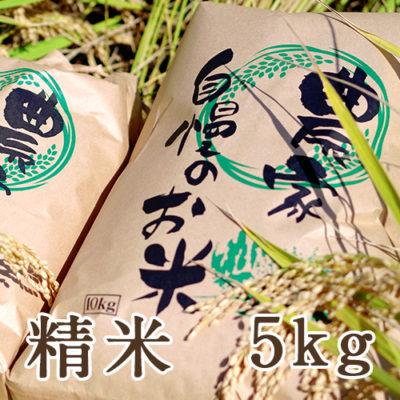 新潟三条産コシヒカリ 精米5kg