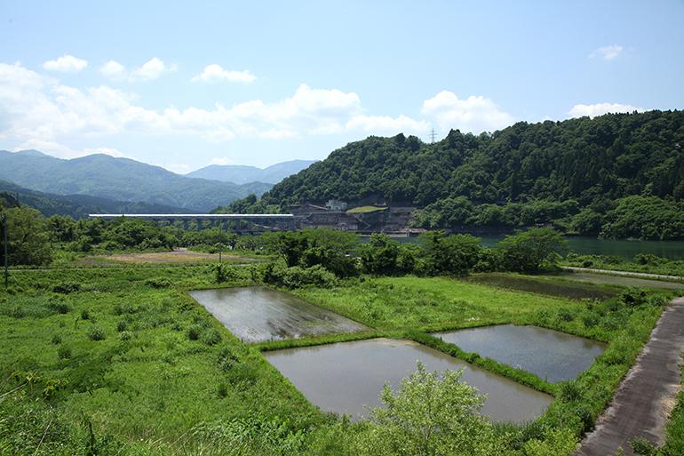 自然の恩恵を受けて育つ阿賀町の食材