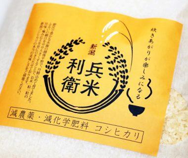 令和元年度米 炊き上がりが楽しみになるコシヒカリ(従来品種)