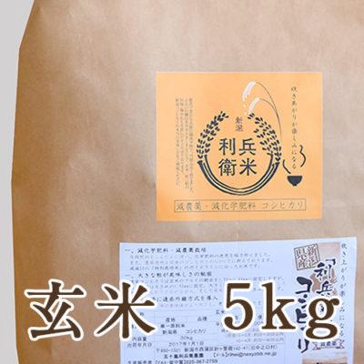 【定期購入】コシヒカリ玄米 5kg