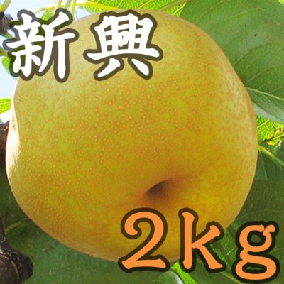 新興 2kg(6~7玉)