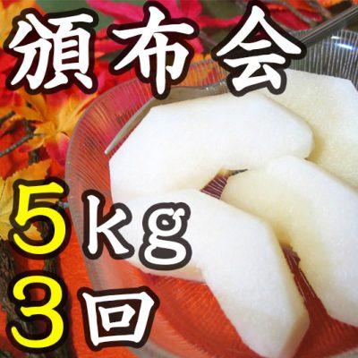【頒布会】利兵衛の梨 5kg×3回