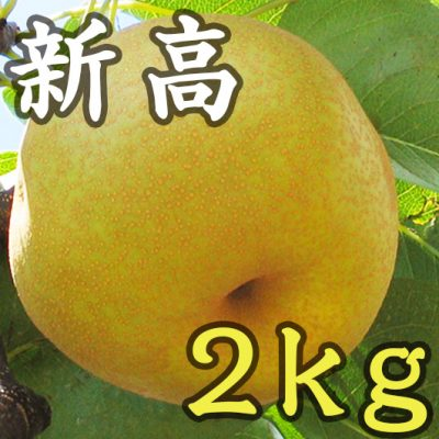 新高 2kg(5~6玉)