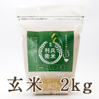 【定期購入】こしいぶき玄米 2kg