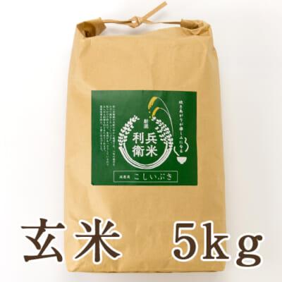 【定期購入】こしいぶき玄米 5kg