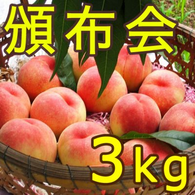 【頒布会】利兵衛の桃 3kg×3回