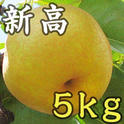 新高 5kg(8~14玉)