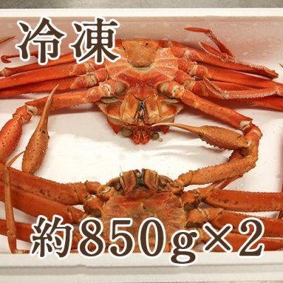 【冷凍】紅ズワイガニ 約850g×2尾