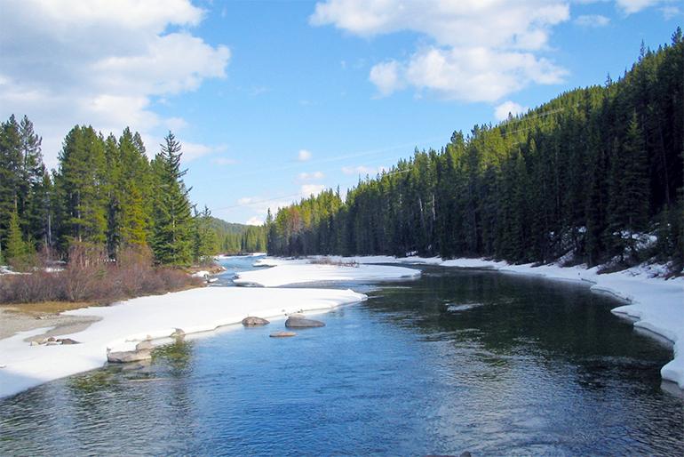 村上市一帯の自然と文化を支えてきた荒川