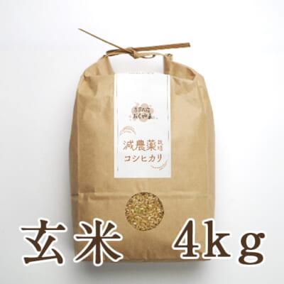 岩船産コシヒカリ 玄米4kg
