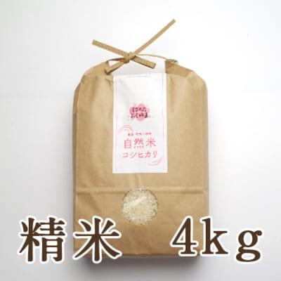 岩船産 自然栽培米コシヒカリ 精米4kg