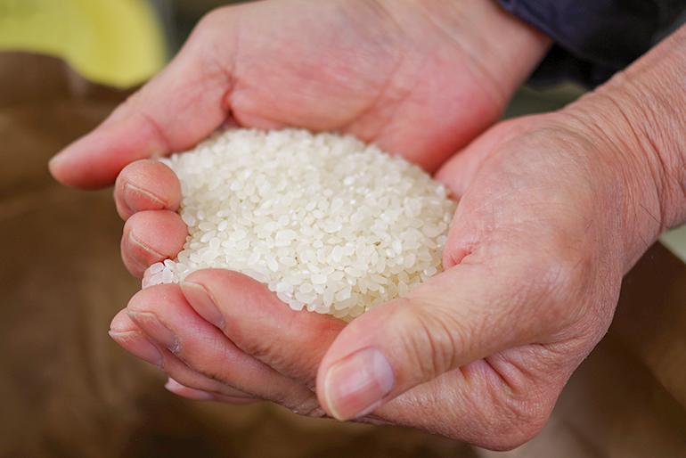 食べる人の健康に配慮した、自然栽培のお米
