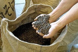 1.へぎそばらしさを追求する蕎麦粉の配合