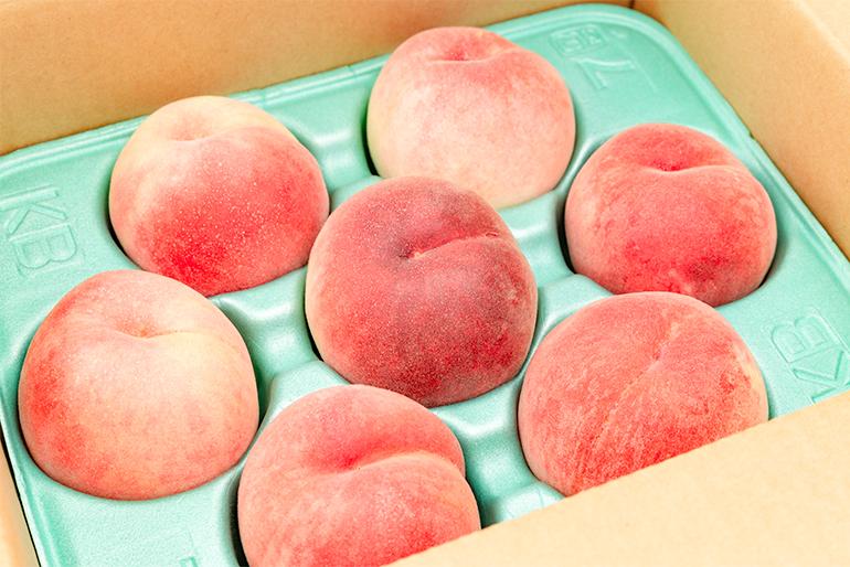 果汁たっぷり!美味しさとびっきり!大切に育てた桃です