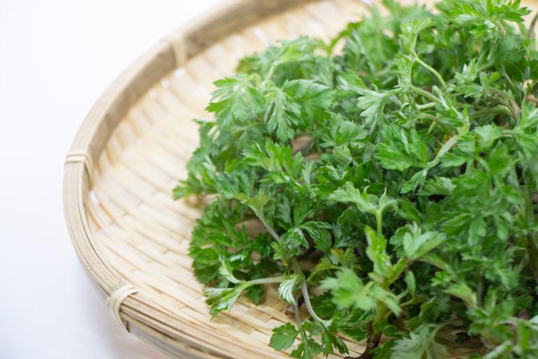香り高い新潟県産の「ヨモギ」と「笹」