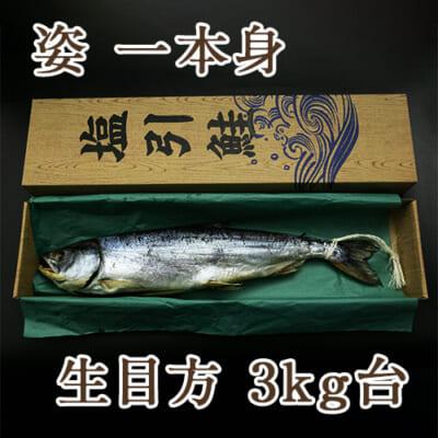 塩引き鮭 姿一本身 生目方3kg台(化粧箱入)