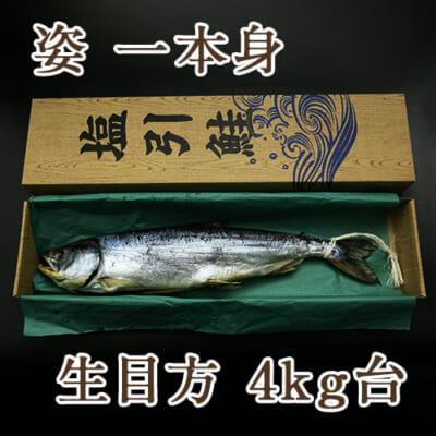 塩引き鮭 姿一本身 生目方4kg台(化粧箱入)