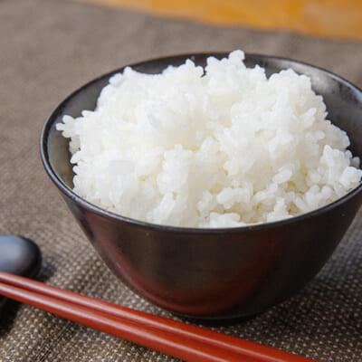最高の環境と日々の研究が生み出した極上米