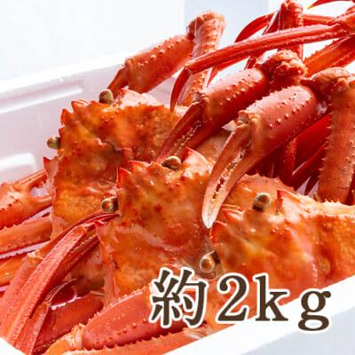 日本海産 紅ズワイガニ 約2kg